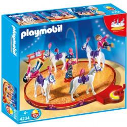 4234 playmobil