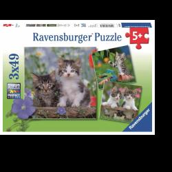 ΠΑΖΛ Ravensburger 3Χ49