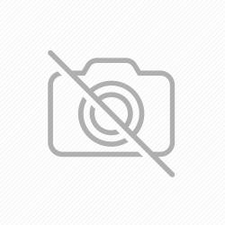 ΔΟΧΕΙΟ ΦΑΓΗΤΟΥ CIRCUS LION FISHER PRICE